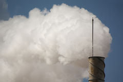 Smoke from the stalk Royalty Free Stock Photos