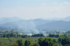 Smoke from straw burning on paddy field Royalty Free Stock Photos
