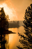 Firestorm in Yellowstone Park. Smoke from a wildfire obscures the sky in Yellowstone Park as a forest fire rages nearby Royalty Free Stock Photography