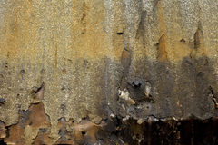 Smoked Barn Siding. Smoked and Rusted Barn Siding Background with Nails Royalty Free Stock Images