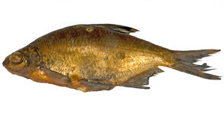Smoked bream Royalty Free Stock Images