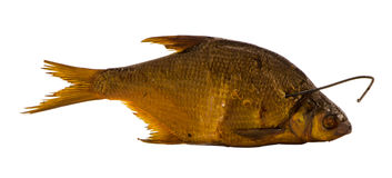 Smoked bream fish isolated on white Royalty Free Stock Photos