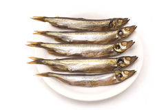 Smoked capelin. Smoked fish on the plate stock photography