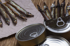 Smoked capelin and conserve tins on wooden background. Smoked capelin and conserve tins on brown  wooden background Stock Images