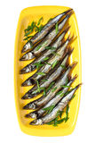 Smoked capelin with green onions on yellow plate Stock Photography