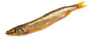 Smoked capelin Stock Image