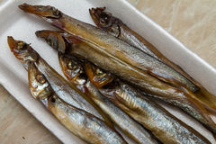 Smoked capelin on a substrate Royalty Free Stock Photo