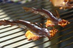 Smoked catfish. Stock Photo