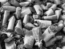Smoked cigarettes. A pic of some smoked cigarette from my own ashtray. smoked them all the way to the filter Stock Image