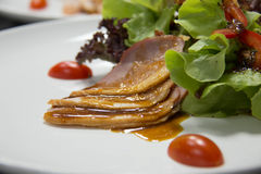 Smoked duck and fresh vegetable salad Royalty Free Stock Photos