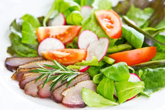 Smoked duck  salad Stock Image