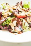 Smoked duck salad Stock Image