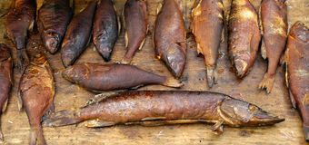 Smoked Fish. River fish of various kinds just hooked and primitively smoked Stock Photography