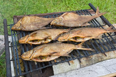 Smoked fish. The smoked fish on Lattice Royalty Free Stock Photography