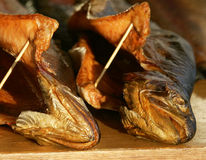 Smoked fish. Appetizing fresh smoked fish On sale royalty free stock photo