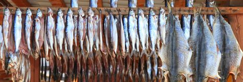 Smoked fish Royalty Free Stock Photo