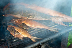 Smoked fish Stock Image