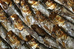 Smoked fish. Background or texture with smoked fish stock photography