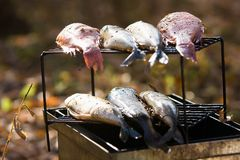 Smoked fish Stock Image