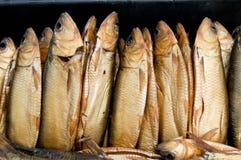 Smoked fish Royalty Free Stock Photo