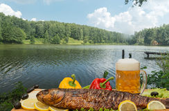 Smoked fish with beer Stock Images