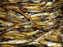 Smoked fish capelin. Royalty Free Stock Image
