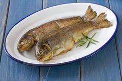 Smoked fish on dish. On blue background Stock Image