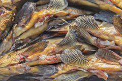 Smoked fish fins. Fins smoked fish delicacy in holiday or weekend Royalty Free Stock Image