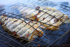 Smoked fish on the grill. Stock Image