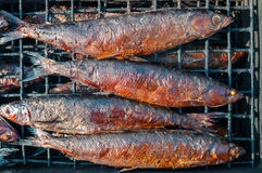 Smoked fish. On the  grill Stock Photos