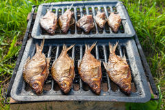 Smoked fish home cooking Stock Images