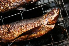 Smoked fish on Lattice Stock Images