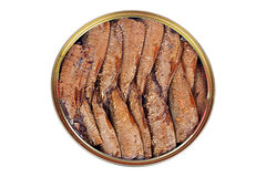 Smoked fish with olive oil in an open tin can on a white Royalty Free Stock Photography