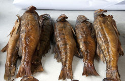 Smoked fish perch. On the large table Stock Image