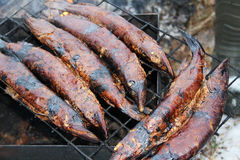 Smoked fish pike in smokehouse. Stock Photography