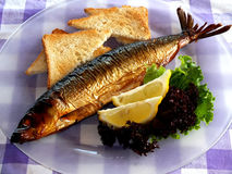 Smoked fish an plate Royalty Free Stock Image
