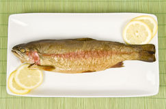 Smoked Fish (Rainbow Trout) Royalty Free Stock Images