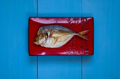 Smoked fish on a red ceramic texture on a blue background stock photography