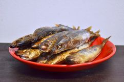 Smoked fish on a red plate Royalty Free Stock Images