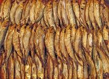 Smoked fish sardines and anchovies Royalty Free Stock Photos
