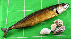 Smoked fish with sea shells Royalty Free Stock Photos