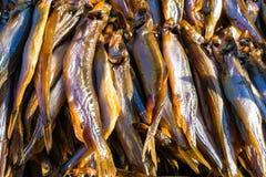 Smoked Fish Sprats Royalty Free Stock Photos