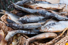 Smoked fish vimba bream Royalty Free Stock Images