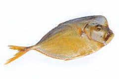 Smoked fish Vomer Royalty Free Stock Photo