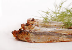 Smoked fishes with herbs Stock Photography