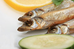 Smoked fishes with lemon and cucumber Stock Images
