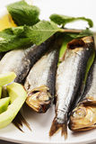 Smoked fishes on plate closeup Royalty Free Stock Images