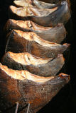 Smoked flatfish Royalty Free Stock Photos