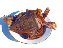 Smoked flatfish Stock Photography