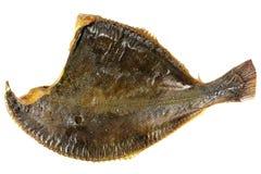 Smoked flounder Stock Photo